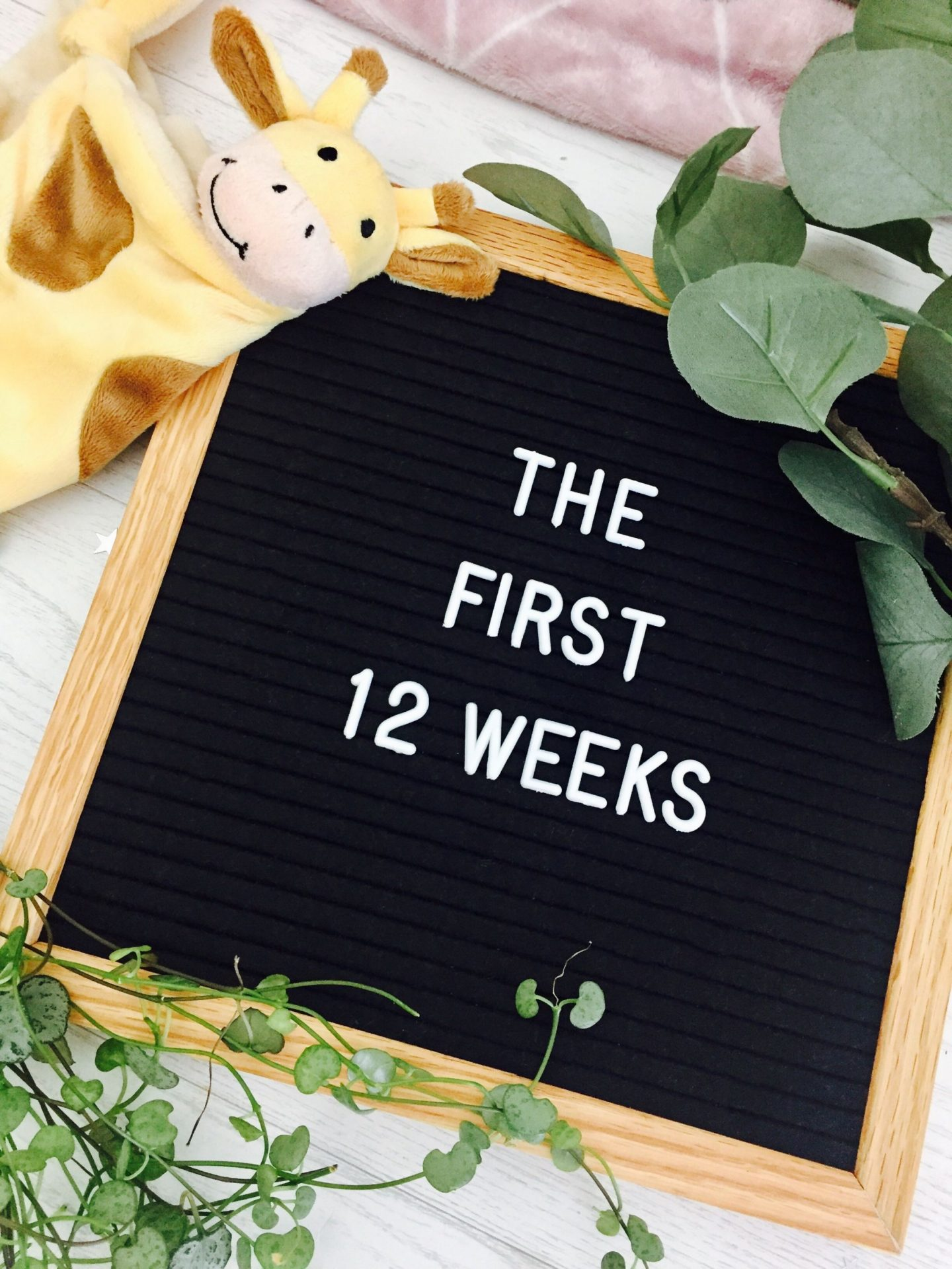Pregnancy updates first trimester 12 weeks